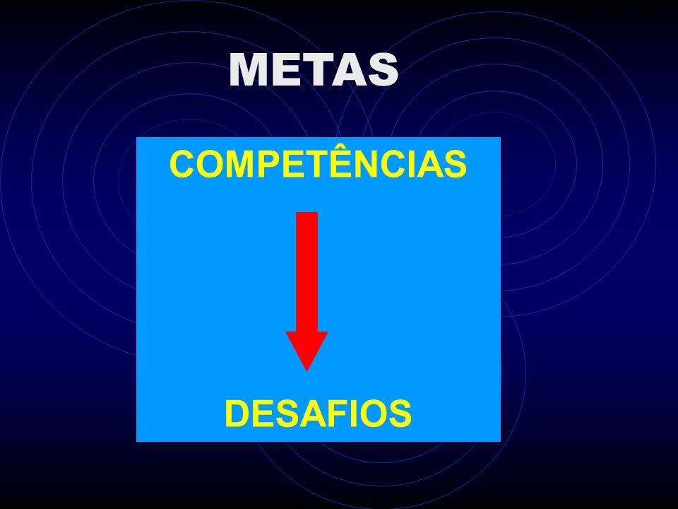 ITAMAR ALLI ITAMAR ALLI METAS COMPETÊNCIAS DESAFIOS