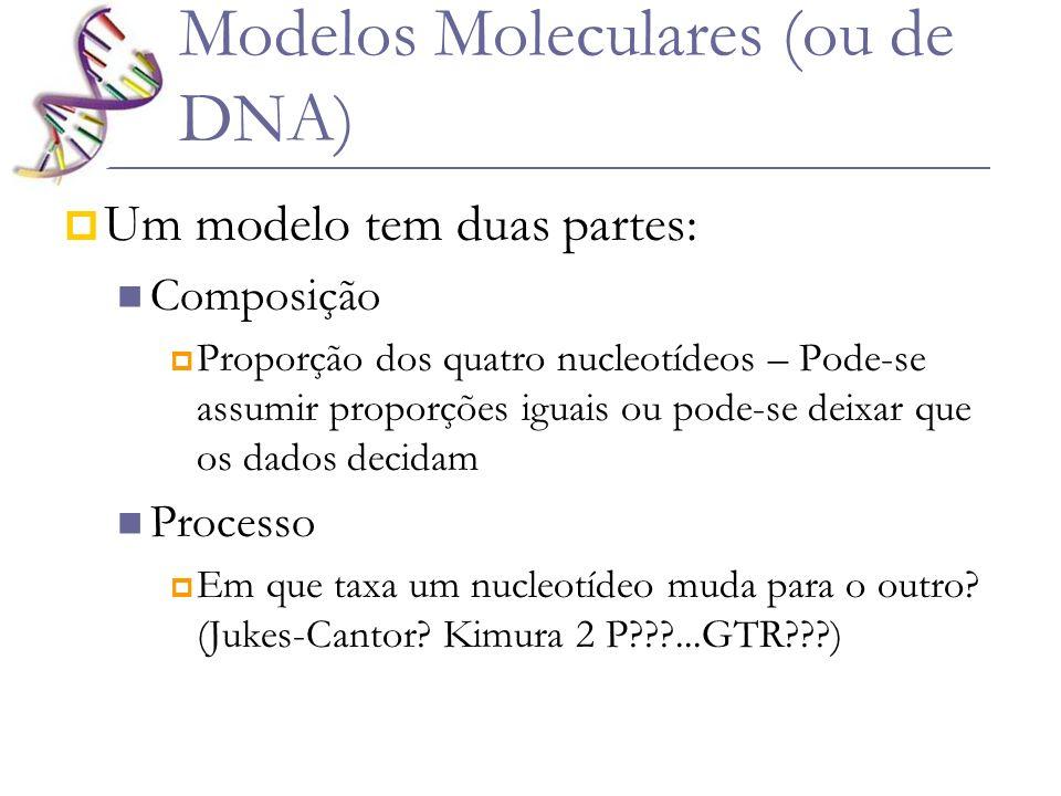 Modelos Moleculares (ou de DNA)