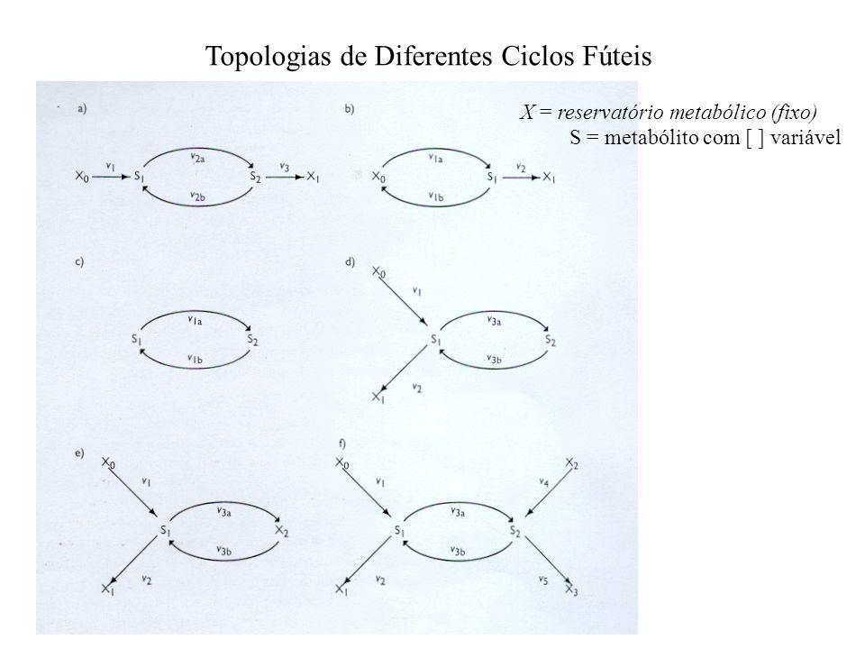 Topologias de Diferentes Ciclos Fúteis