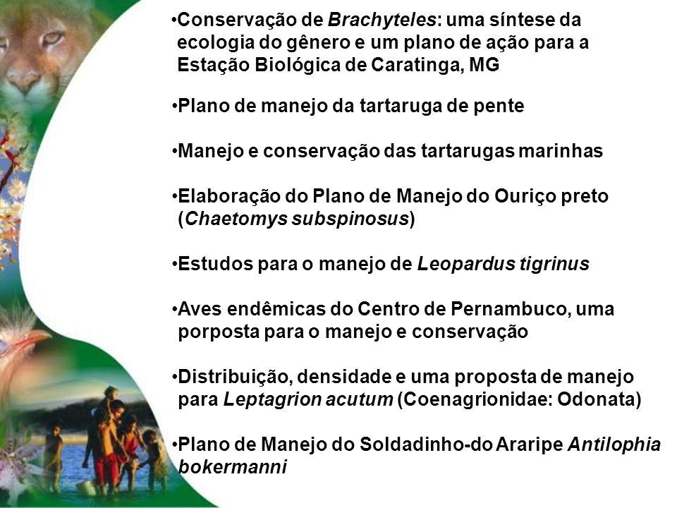 Conservação de Brachyteles: uma síntese da ecologia do gênero e um plano de ação para a Estação Biológica de Caratinga, MG
