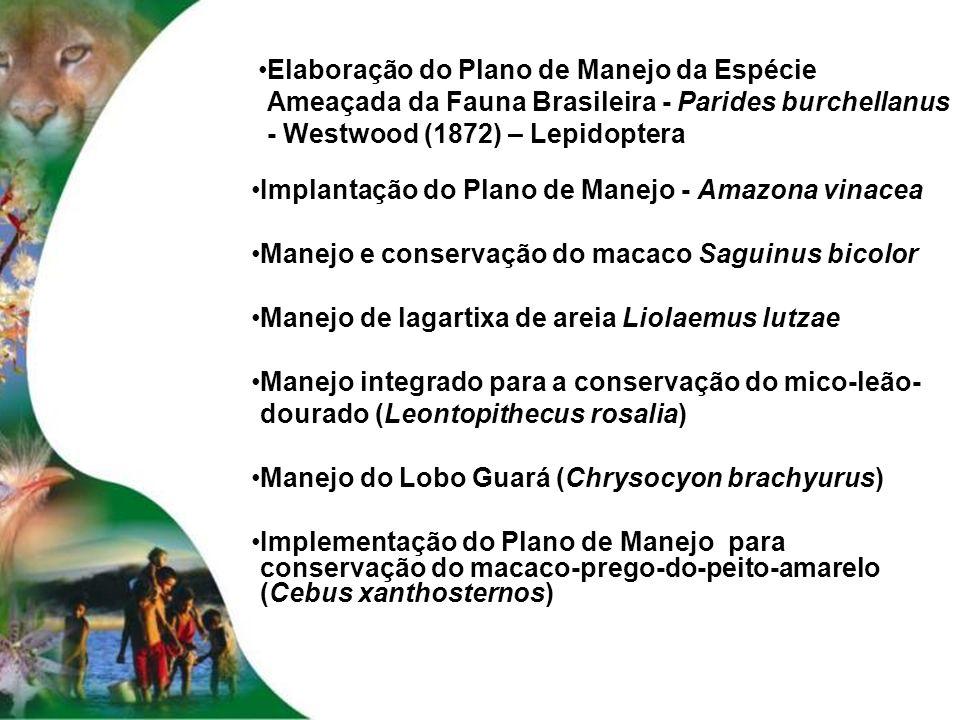 Elaboração do Plano de Manejo da Espécie Ameaçada da Fauna Brasileira - Parides burchellanus - Westwood (1872) – Lepidoptera