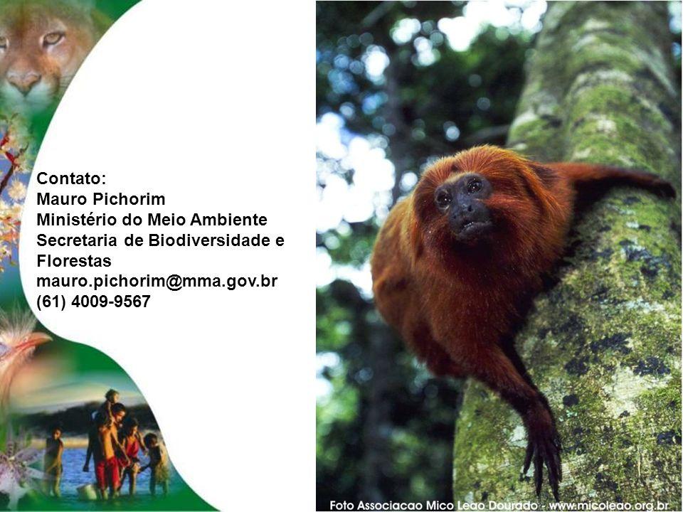 Contato: Mauro Pichorim. Ministério do Meio Ambiente. Secretaria de Biodiversidade e Florestas. mauro.pichorim@mma.gov.br.