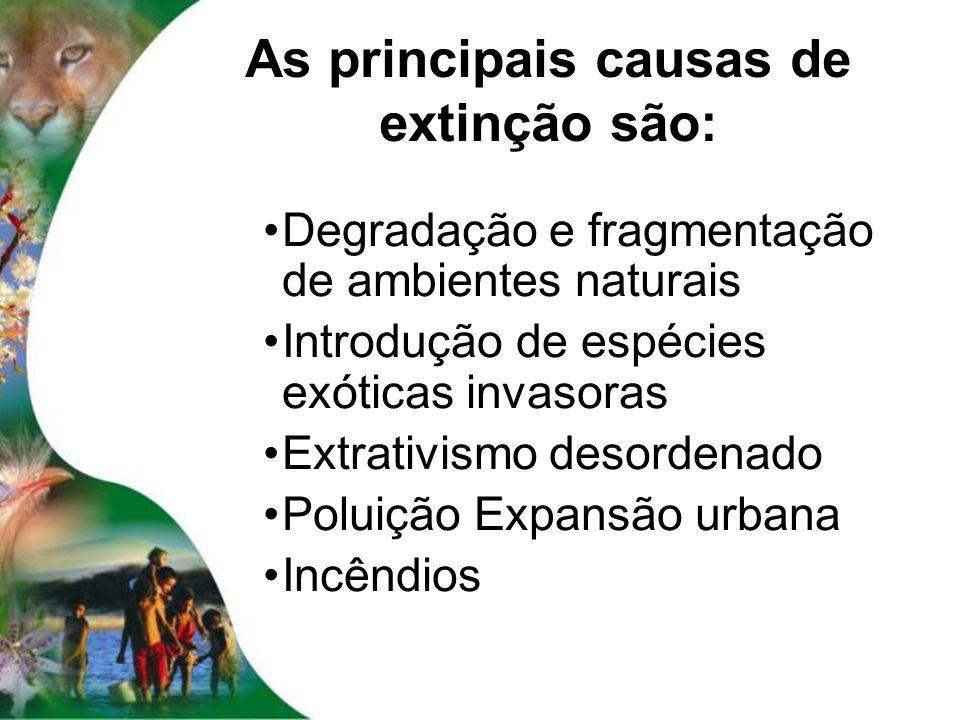 As principais causas de extinção são: