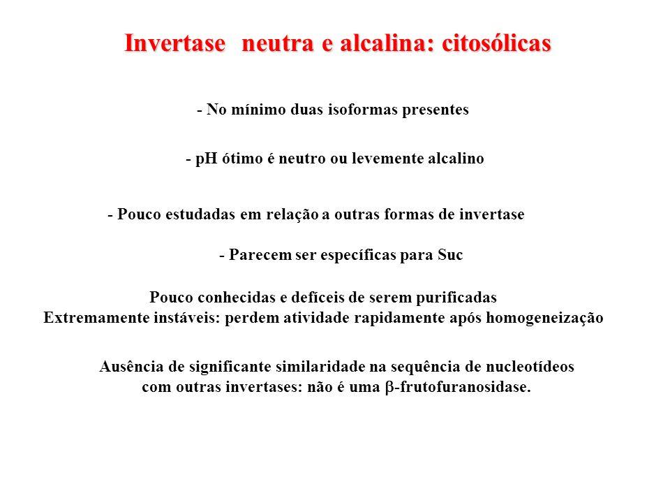 Invertase neutra e alcalina: citosólicas