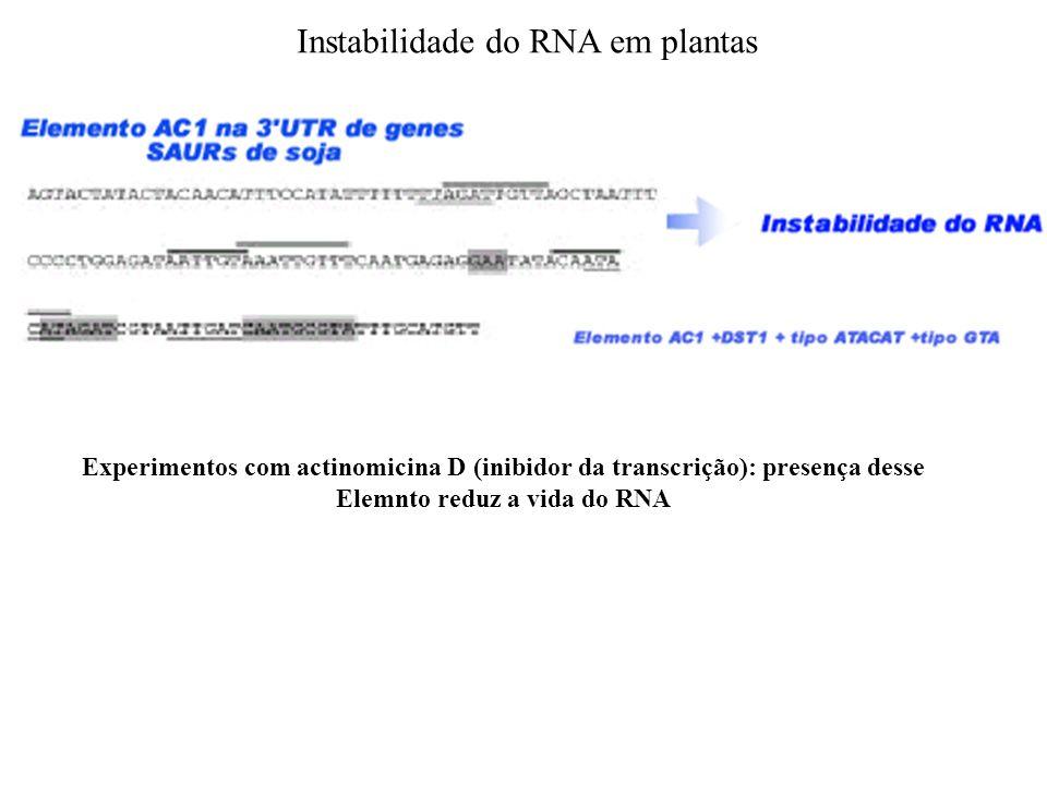 Elemnto reduz a vida do RNA