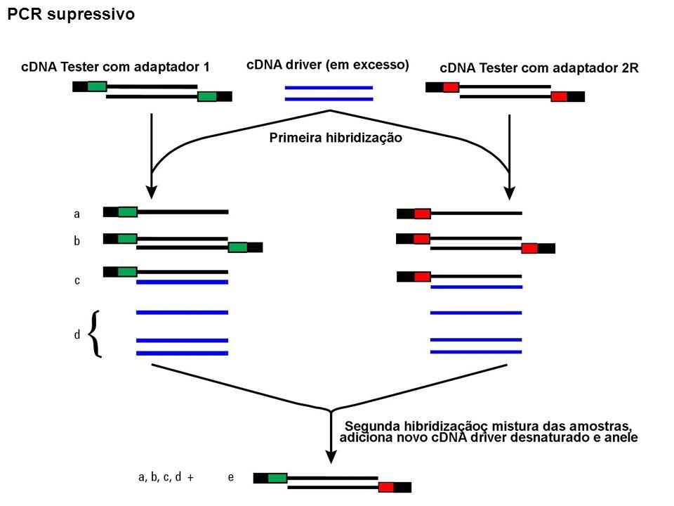 PCR supressivo