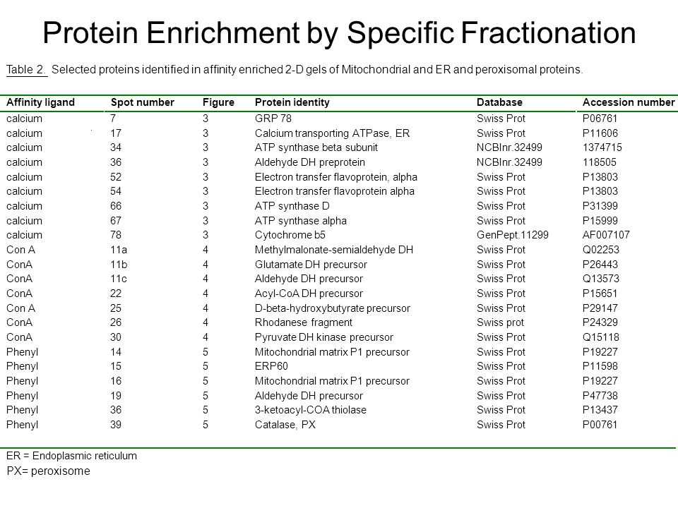 Protein Enrichment by Specific Fractionation