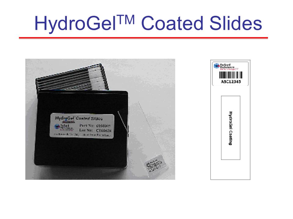HydroGelTM Coated Slides