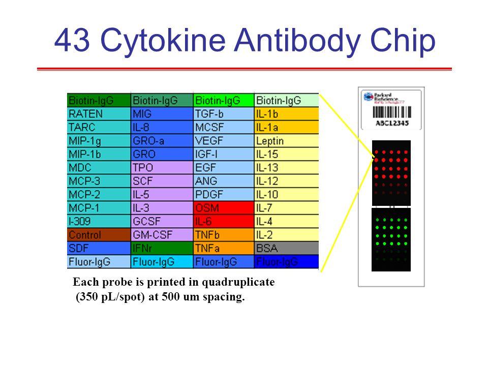43 Cytokine Antibody Chip