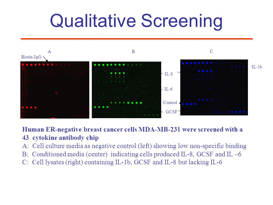 Qualitative Screening