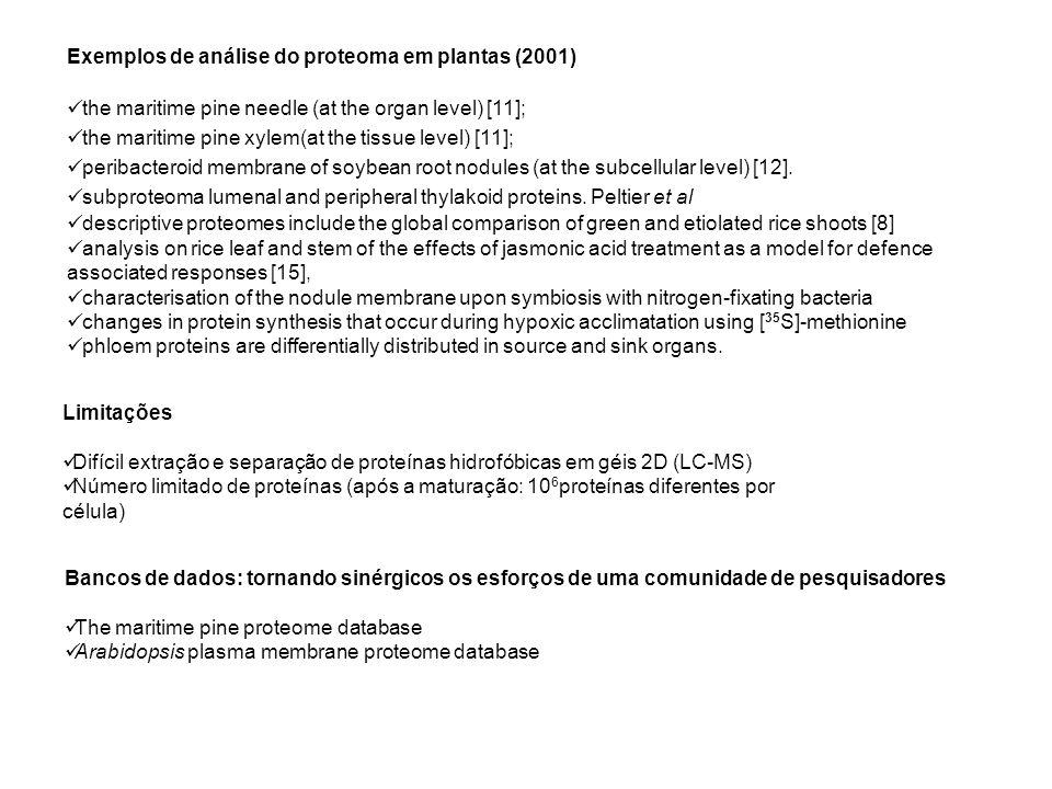 Exemplos de análise do proteoma em plantas (2001)