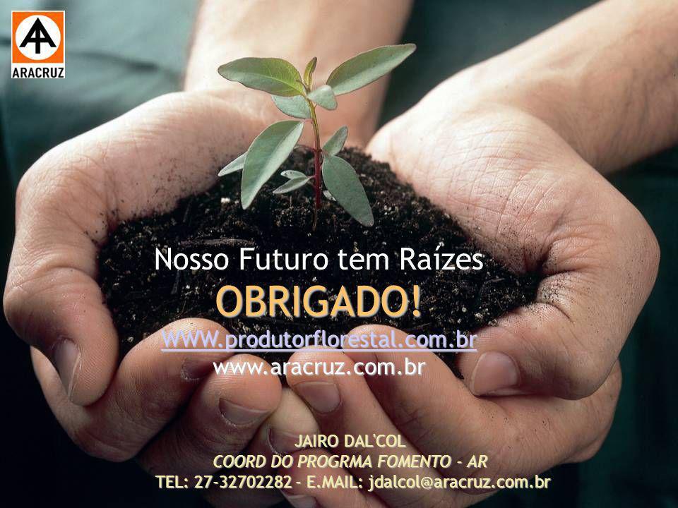 OBRIGADO! WWW.produtorflorestal.com.br www.aracruz.com.br
