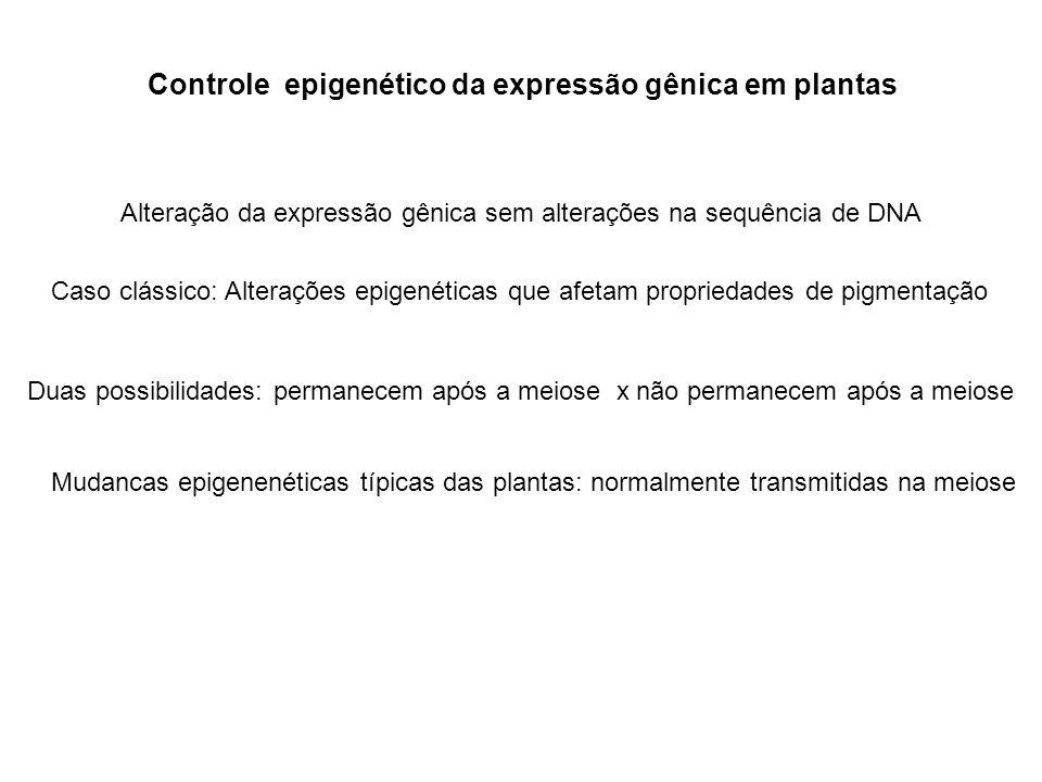 Controle epigenético da expressão gênica em plantas