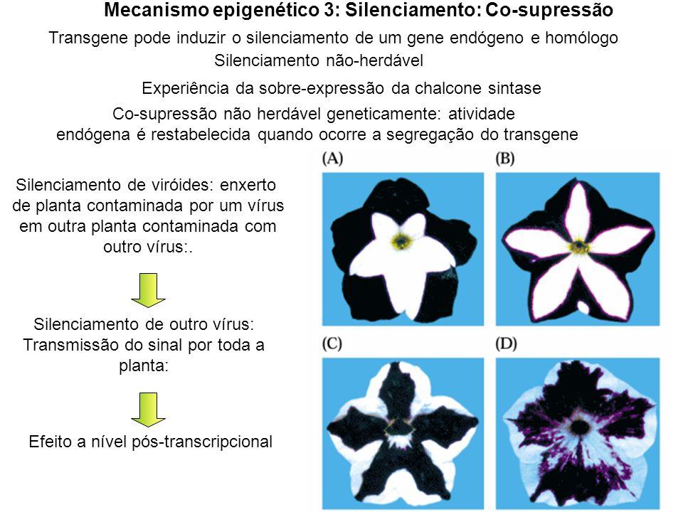 Mecanismo epigenético 3: Silenciamento: Co-supressão