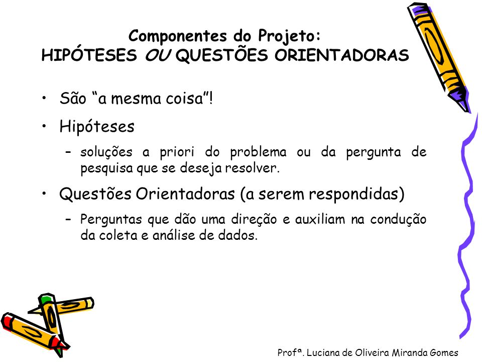 Componentes do Projeto: HIPÓTESES OU QUESTÕES ORIENTADORAS