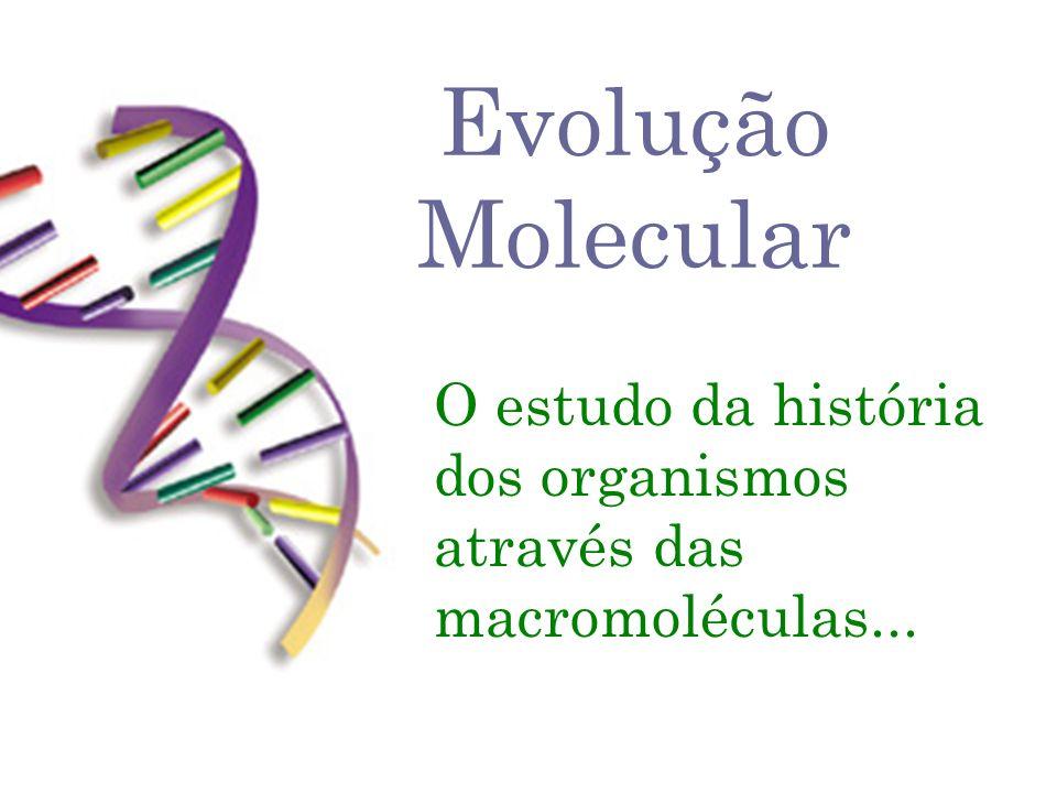 O estudo da história dos organismos através das macromoléculas...