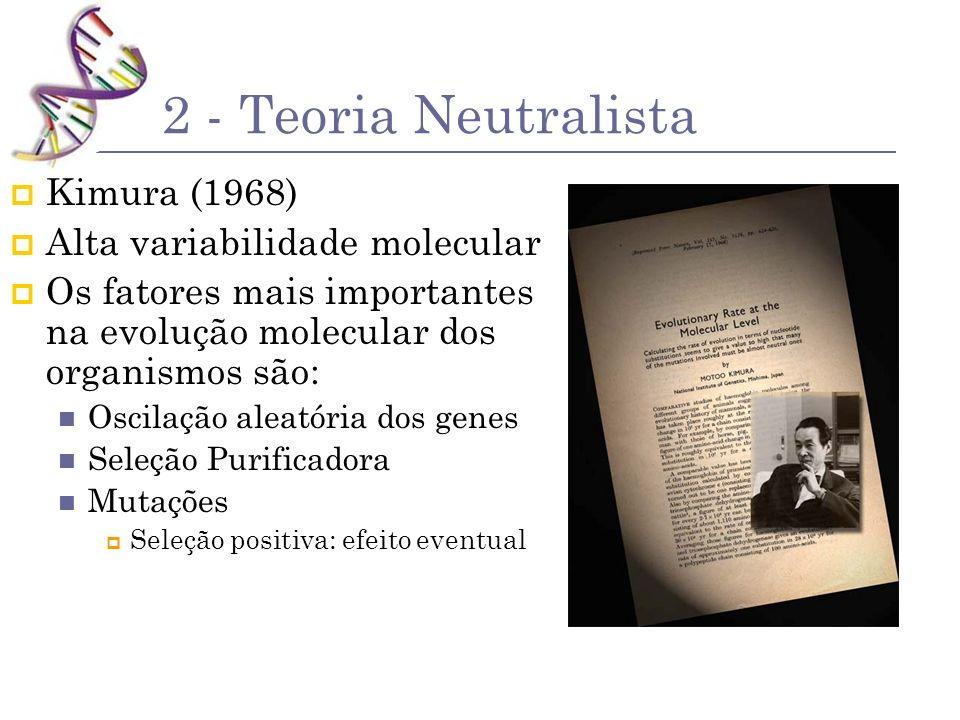 2 - Teoria Neutralista Kimura (1968) Alta variabilidade molecular