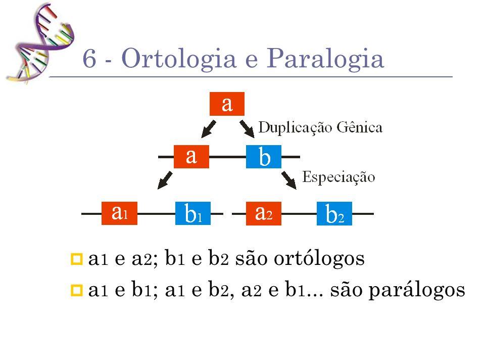 6 - Ortologia e Paralogia