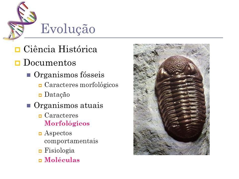 Evolução Ciência Histórica Documentos Organismos fósseis