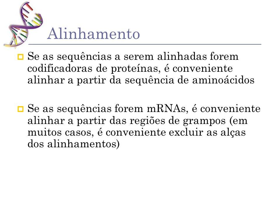 Alinhamento Se as sequências a serem alinhadas forem codificadoras de proteínas, é conveniente alinhar a partir da sequência de aminoácidos.