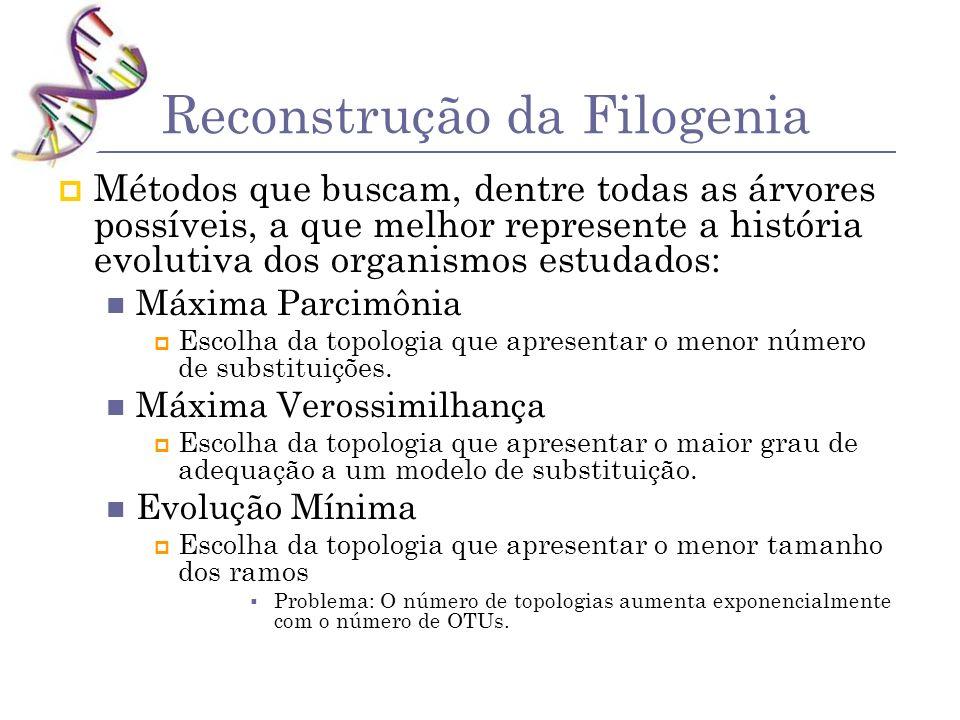 Reconstrução da Filogenia