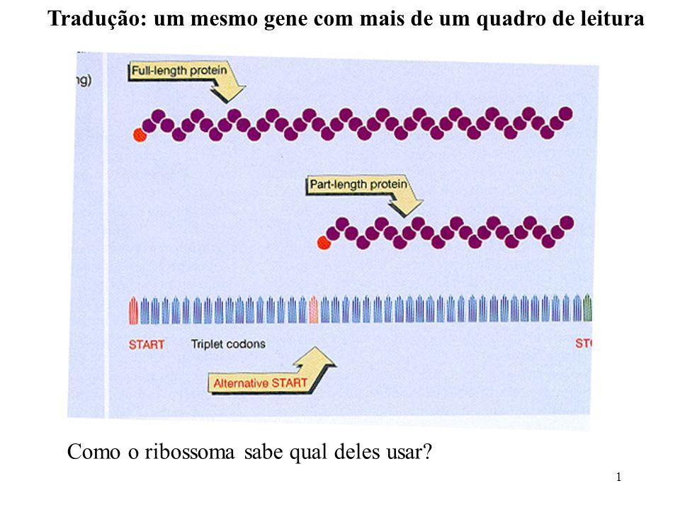 Tradução: um mesmo gene com mais de um quadro de leitura