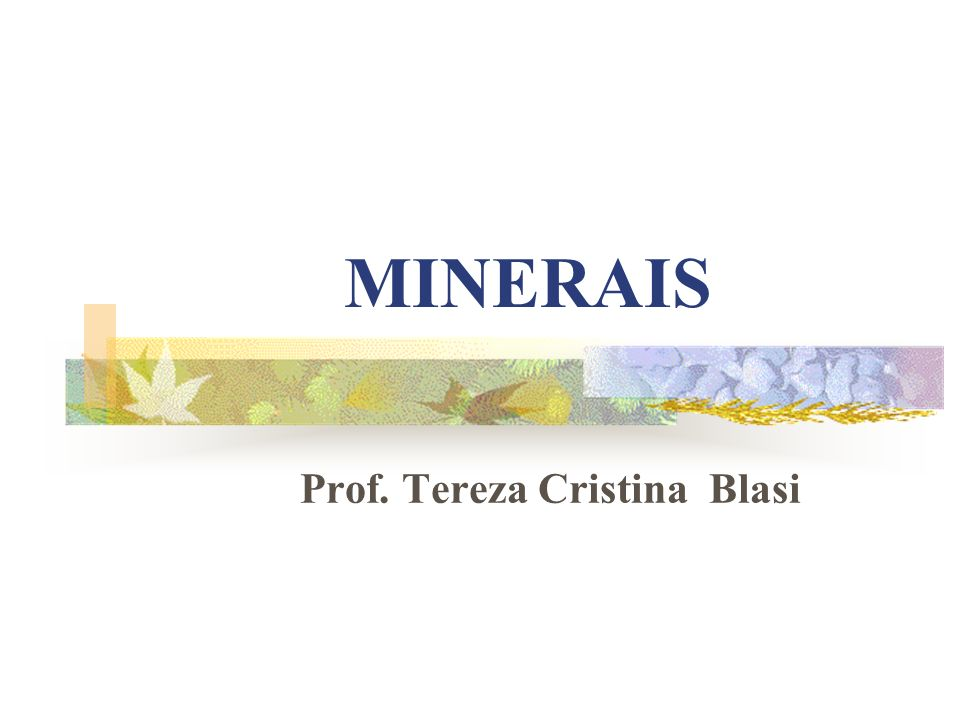 Prof. Tereza Cristina Blasi