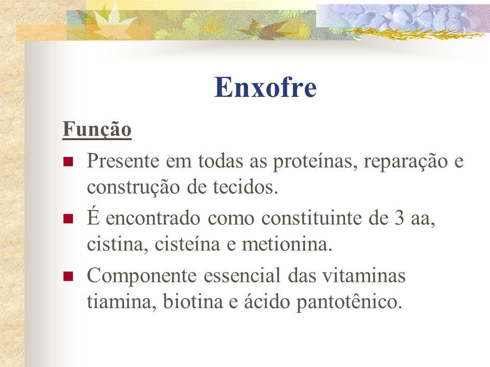 Enxofre Função. Presente em todas as proteínas, reparação e construção de tecidos.