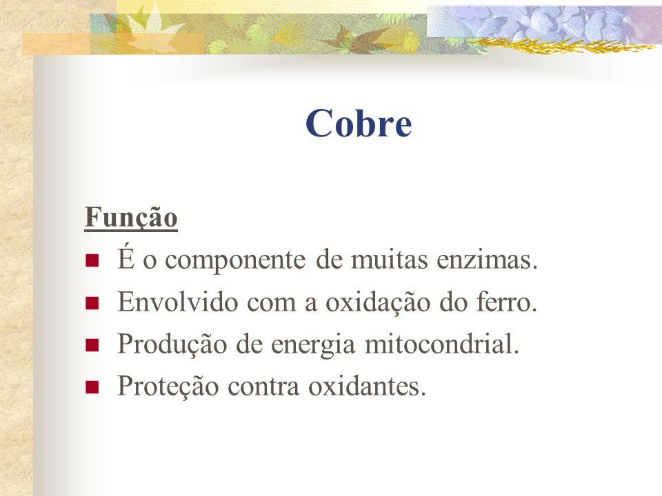 Cobre Função É o componente de muitas enzimas.