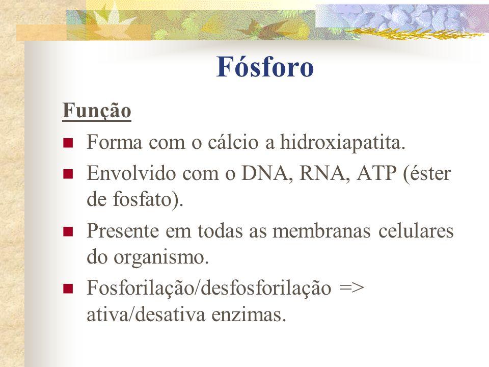 Fósforo Função Forma com o cálcio a hidroxiapatita.