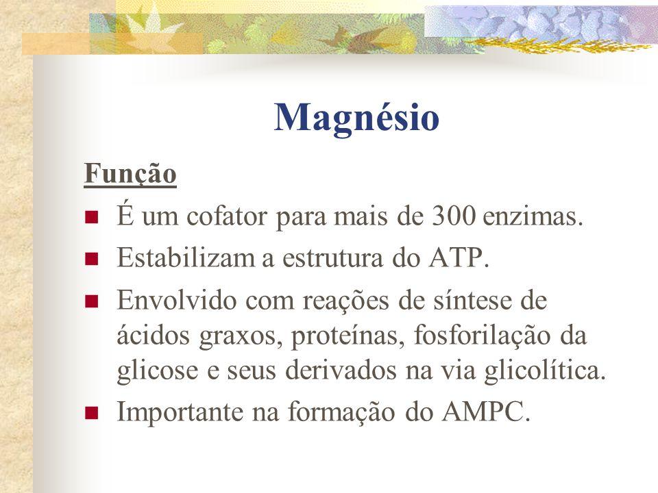 Magnésio Função É um cofator para mais de 300 enzimas.