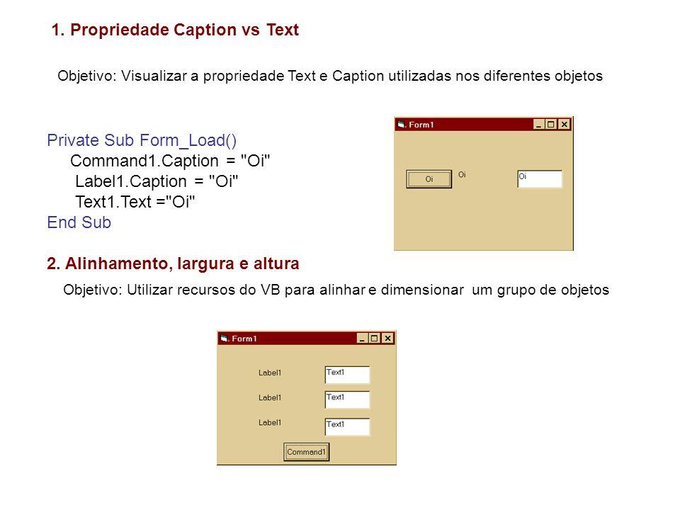 1. Propriedade Caption vs Text