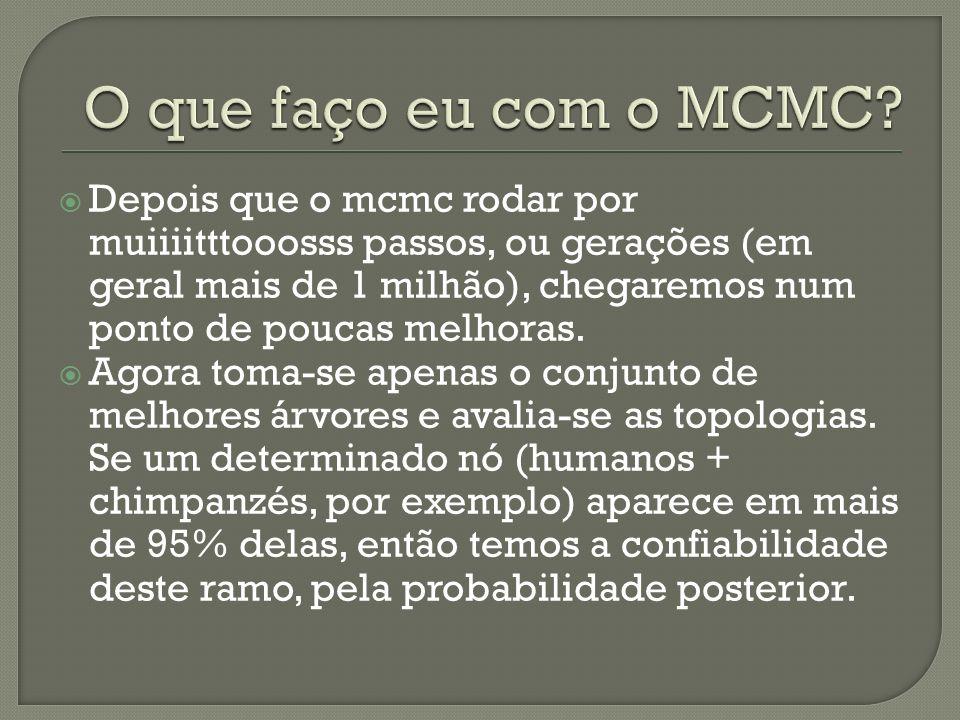O que faço eu com o MCMC