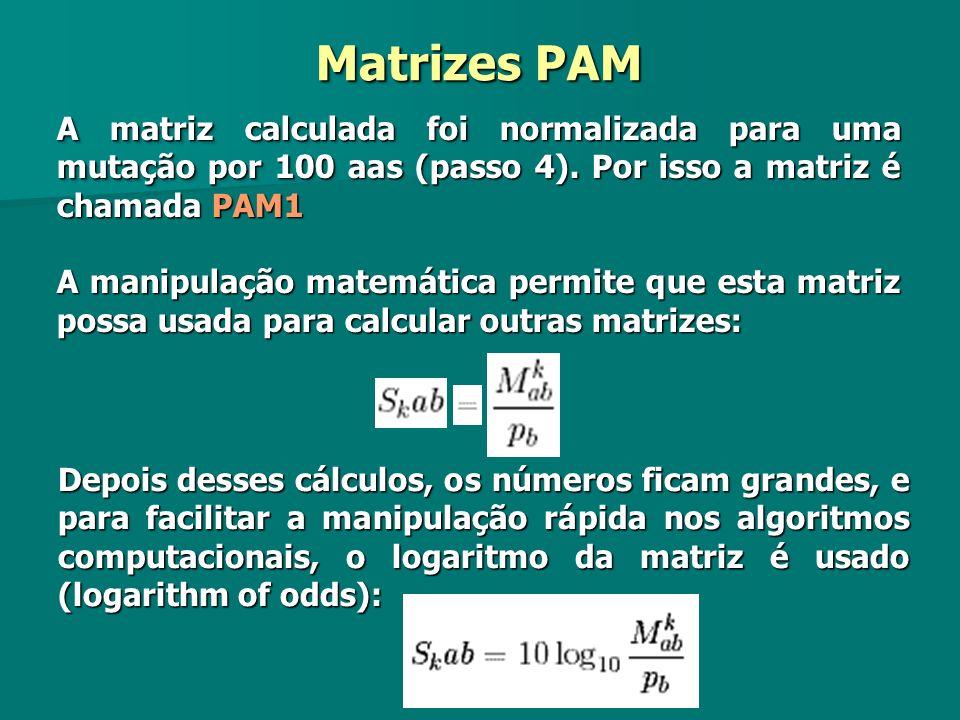 Matrizes PAM A matriz calculada foi normalizada para uma mutação por 100 aas (passo 4). Por isso a matriz é chamada PAM1.