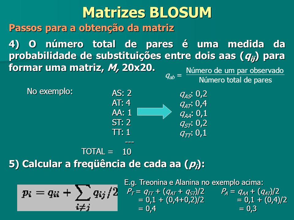Matrizes BLOSUM Passos para a obtenção da matriz