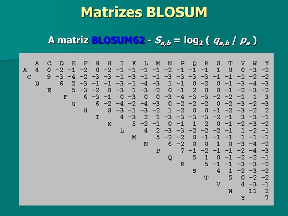 Matrizes BLOSUM A matriz BLOSUM62 - Sa,b = log2 ( qa,b / pa )