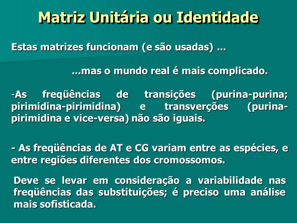 Matriz Unitária ou Identidade