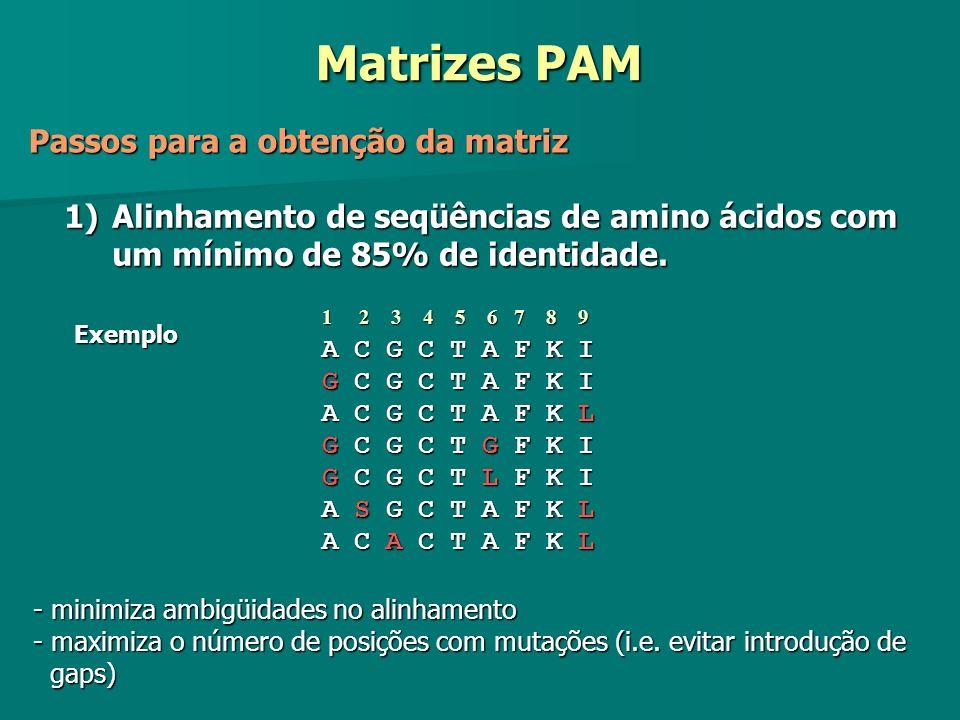 Matrizes PAM Passos para a obtenção da matriz