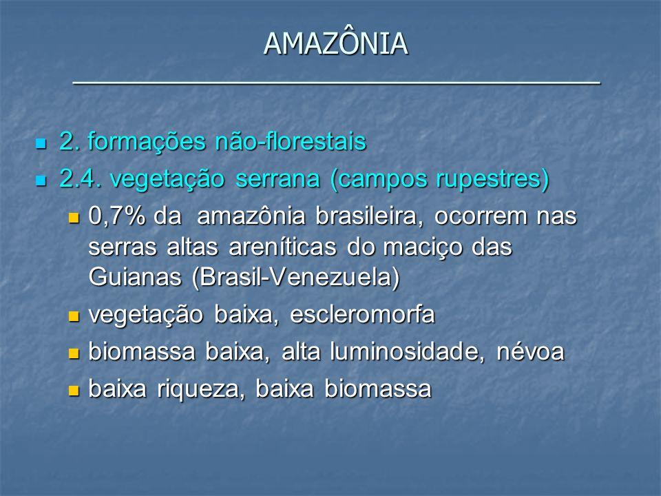 AMAZÔNIA _________________________________