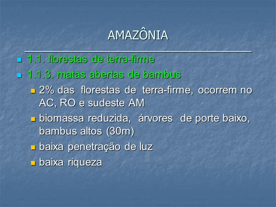AMAZÔNIA __________________________________