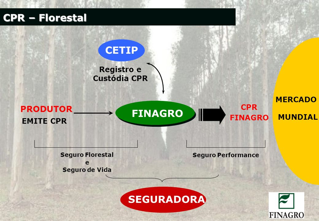 Registro e Custódia CPR
