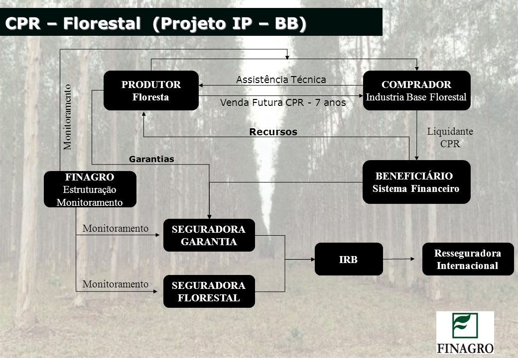 Industria Base Florestal