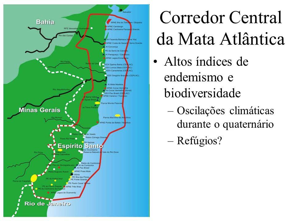 Corredor Central da Mata Atlântica