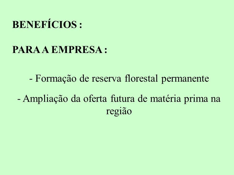 - Formação de reserva florestal permanente