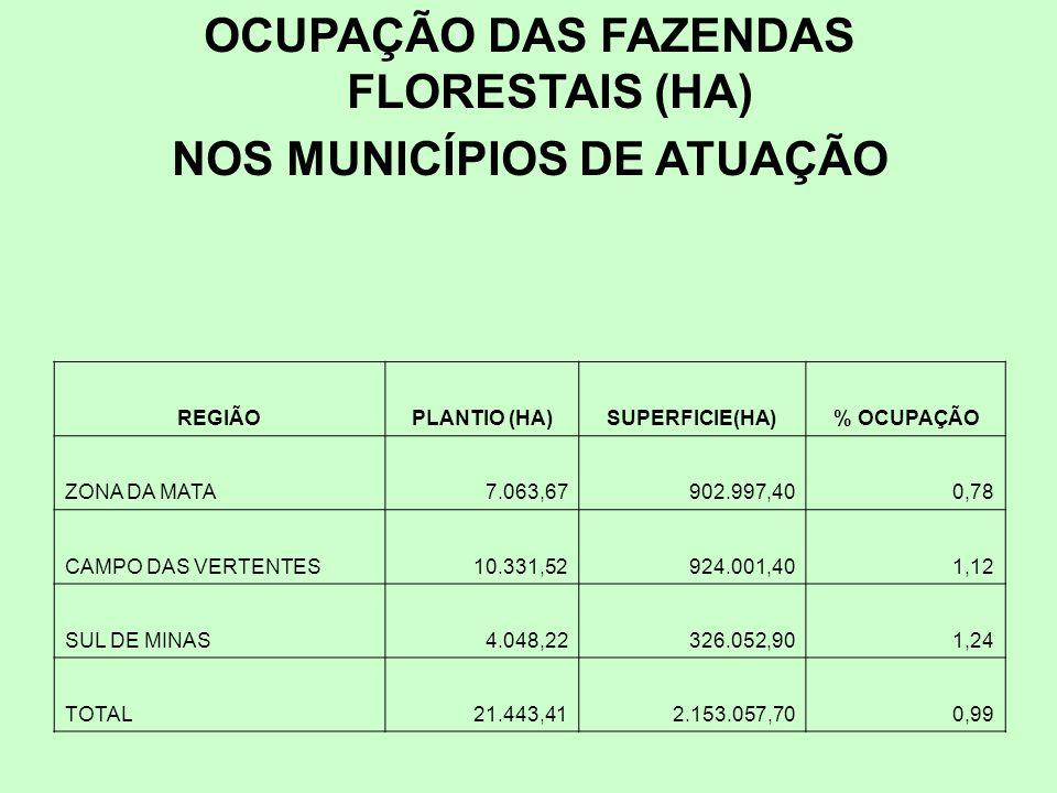 OCUPAÇÃO DAS FAZENDAS FLORESTAIS (HA) NOS MUNICÍPIOS DE ATUAÇÃO