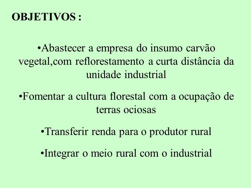 Fomentar a cultura florestal com a ocupação de terras ociosas