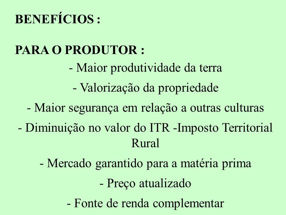 - Maior produtividade da terra - Valorização da propriedade