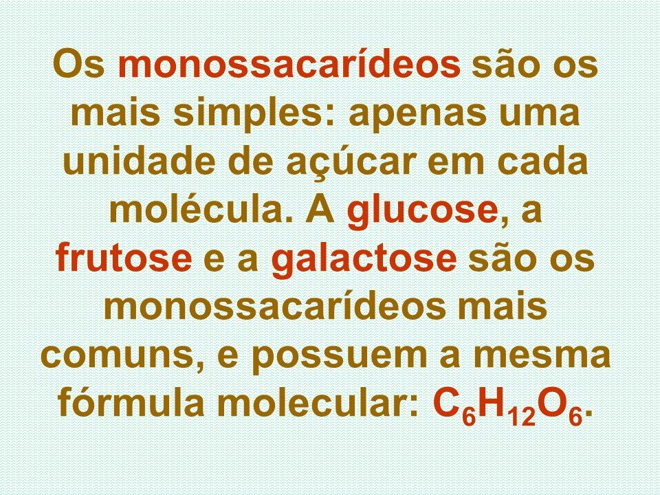 Os monossacarídeos são os mais simples: apenas uma unidade de açúcar em cada molécula.
