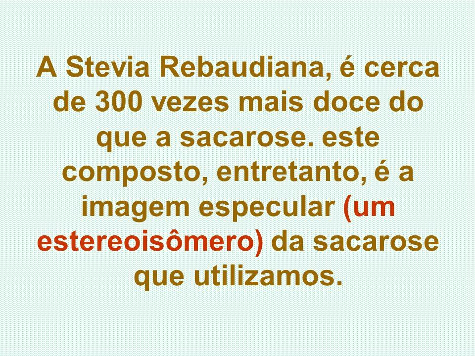 A Stevia Rebaudiana, é cerca de 300 vezes mais doce do que a sacarose