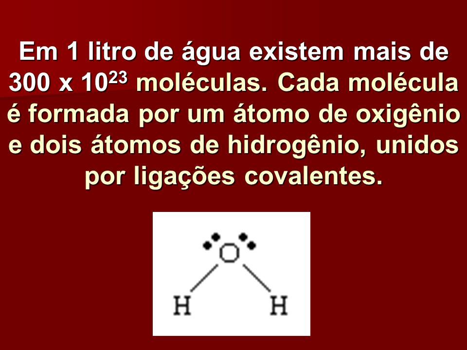Em 1 litro de água existem mais de 300 x 1023 moléculas